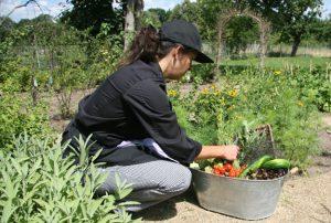 """Kräutergarten für das Seminar """"Nachhaltig handel und leben"""""""