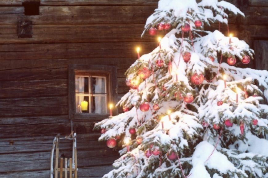Frohe Weihnachten Berlin.Wir Wünschen Frohe Weihnachten Umwelt Bildungszentrum Berlin