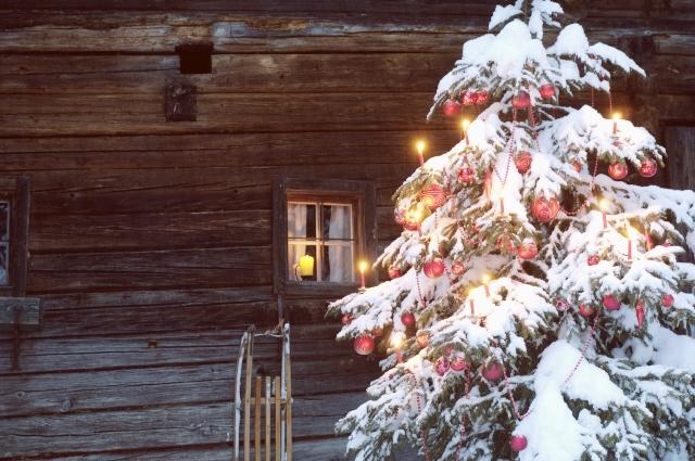 """Adventsbrunch, Weihnachtscatering, winterliches Buffet oder """"Ente to go"""""""