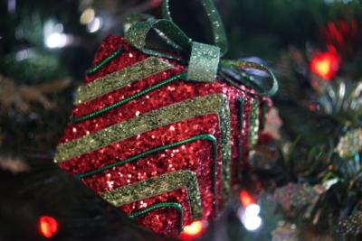 Fröhliche Weihnachten & ein gesundes neues Jahr!